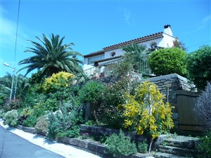 Le rayol Canadel : Villas  Villa (M and Mrs ALVARES)