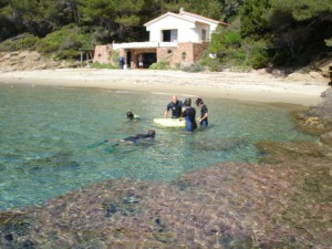 Le rayol Canadel : Sports and Leisure SNORKELING  ACTIVITY
