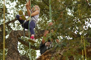 Le rayol Canadel : Sports and Leisure ACTIVITY CLIMB IN THE TREETS
